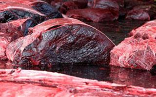 Утильное мясо и кровь