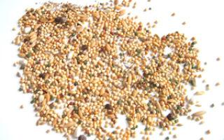 Питательные вещества и их значение для организма птицы