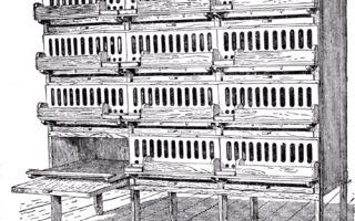 Клетка батарея для выращивания цыплят